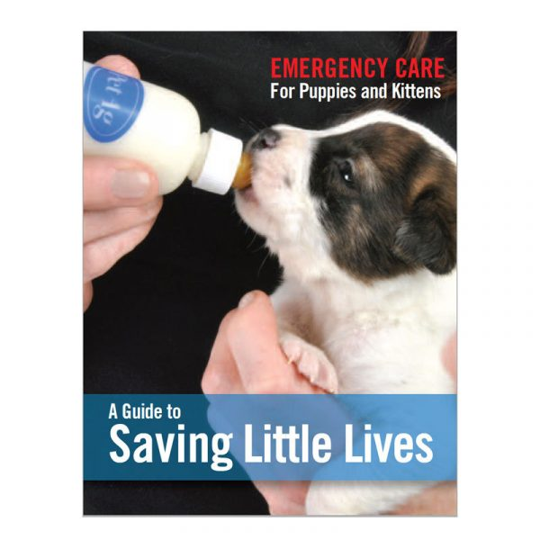 A Guide to Saving Little Lives