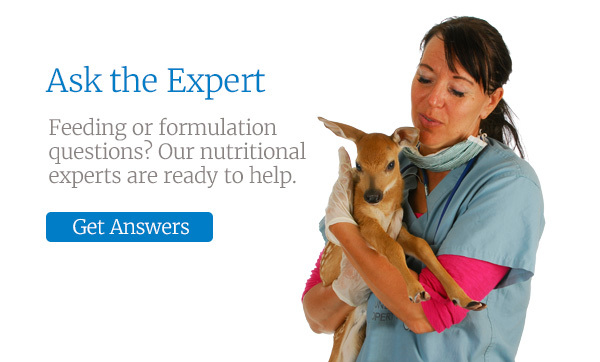 Ask the Expert. Feeding or formulation questions? Our nutritional experts are ready to help.
