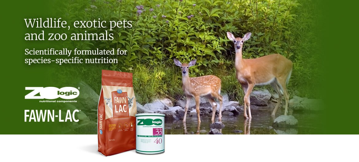 White-tailed doe with fawn, featured product ZooLogic® Milk Matrix